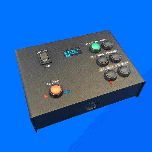 Voice Recorder (DVR07)